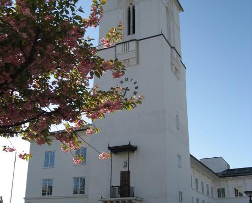 Rådhuset rosa ASB
